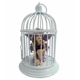 Protected ティナフェアリー Tina Fairy
