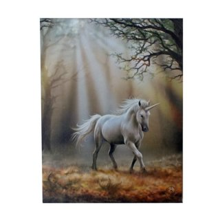 アンストークス ユニコーンキャンバスアートプリントフレーム Anne Stokes Glimpse Of A Unicorn Canvas Picture
