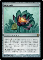 睡蓮の花/Lotus Bloom(TSP)【日本語】