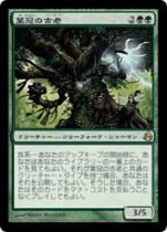 葉冠の古老/Leaf-Crowned Elder(MOR)【日本語】