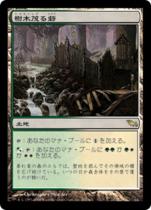樹木茂る砦/Wooded Bastion(SHM)【日本語】