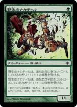 野生のナカティル/Wild Nacatl(ALA)【日本語】