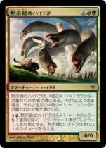 黙示録のハイドラ/Apocalypse Hydra(CON)【日本語】
