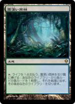 霧深い雨林/Misty Rainforest(ZEN)【日本語】