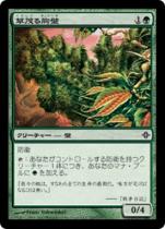 草茂る胸壁/Overgrown Battlement(ROE)【日本語】