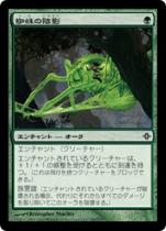 蜘蛛の陰影/Spider Umbra(ROE)【日本語】