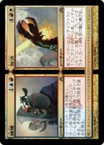 捕獲+放流/Catch+Release(DGM)【日本語】
