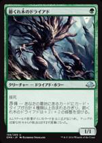 節くれ木のドライアド/Gnarlwood Dryad(EMN)【日本語】