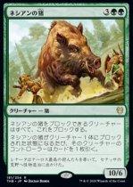ネシアンの猪/Nessian Boar(THB)【日本語】