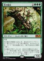茨の騎兵/Cavalier of Thorns(M20)【日本語】