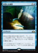 水没した秘密/Drowned Secrets(GRN)【日本語】