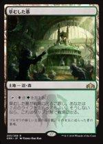 草むした墓/Overgrown Tomb(GRN)【日本語】