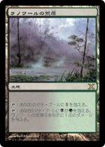ラノワールの荒原/Llanowar Wastes(10E)【日本語】