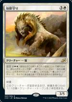 幼獣守り/Cubwarden(IKO)【日本語】