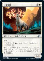 壮麗牝馬/Splendor Mare(IKO)【日本語】
