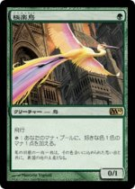極楽鳥/Birds of Paradise(M10)【日本語】