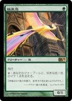 極楽鳥/Birds of Paradise(M12)【日本語】
