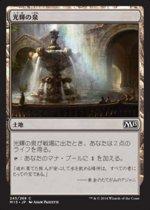 光輝の泉/Radiant Fountain(M15)【日本語】