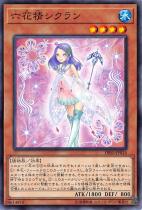 六花精シクラン【ノーマル】DBSS-JP016