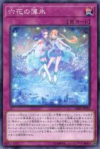 六花の薄氷【ノーマル】DBSS-JP026