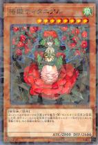 椿姫ティタニアル【パラレル】DBSS-JP041