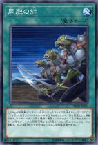 同胞の絆【ノーマル】SR10-JP030