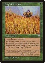 エレファント・グラス/Elephant Grass(VIS)【英語】