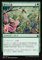 肥沃な大地/Fertile Ground(BBD)【日本語】
