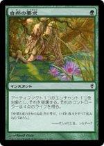 自然の要求/Nature's Claim(CNS)【日本語】