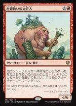 村背負いの大巨人/Hamletback Goliath(CN2)【日本語】