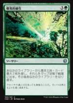 爆発的植生/Explosive Vegetation(CN2)【日本語】
