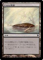 やせた原野/Barren Moor(C13)【日本語】