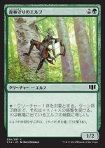 森林守りのエルフ/Timberwatch Elf(C14)【日本語】