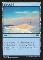 孤立した砂州/Lonely Sandbar(C14)【日本語】