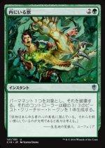 内にいる獣/Beast Within(C16)【日本語】