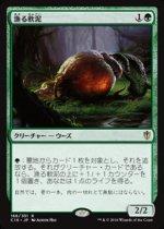 漁る軟泥/Scavenging Ooze(C16)【日本語】