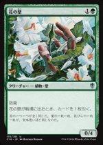 花の壁/Wall of Blossoms(C16)【日本語】