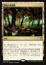 禁忌の果樹園/Forbidden Orchard(C16)【日本語】