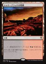 シャドーブラッドの尾根/Shadowblood Ridge(C16)【日本語】