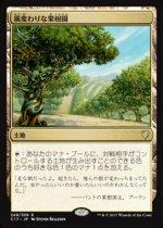 風変わりな果樹園/Exotic Orchard(C17)【日本語】