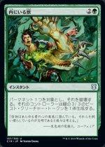 内にいる獣/Beast Within(C19)【日本語】