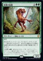 死霧の猛禽/Deathmist Raptor(C19)【日本語】