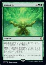 巫師の天啓/Shamanic Revelation(C19)【日本語】