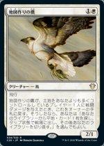 地図作りの鷹/Cartographer's Hawk(C20)【日本語】
