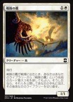 戦隊の鷹/Squadron Hawk(EMA)【日本語】