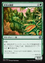 草茂る胸壁/Overgrown Battlement(IMA)【日本語】