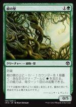 根の壁/Wall of Roots(IMA)【日本語】