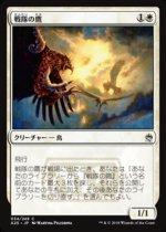 戦隊の鷹/Squadron Hawk(A25)【日本語】