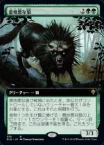 意地悪な狼/Wicked Wolf(ELD)【日本語FOIL】(拡張アート)