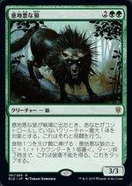 意地悪な狼/Wicked Wolf(ELD)【日本語FOIL】